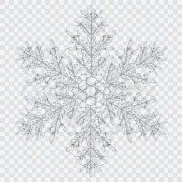 Snowflake Image 2
